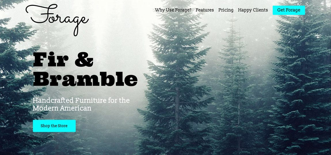 a website set in a foggy fir forest