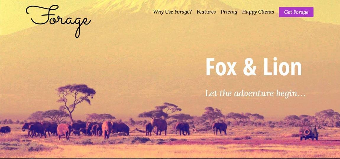 a website depicting an african savanna