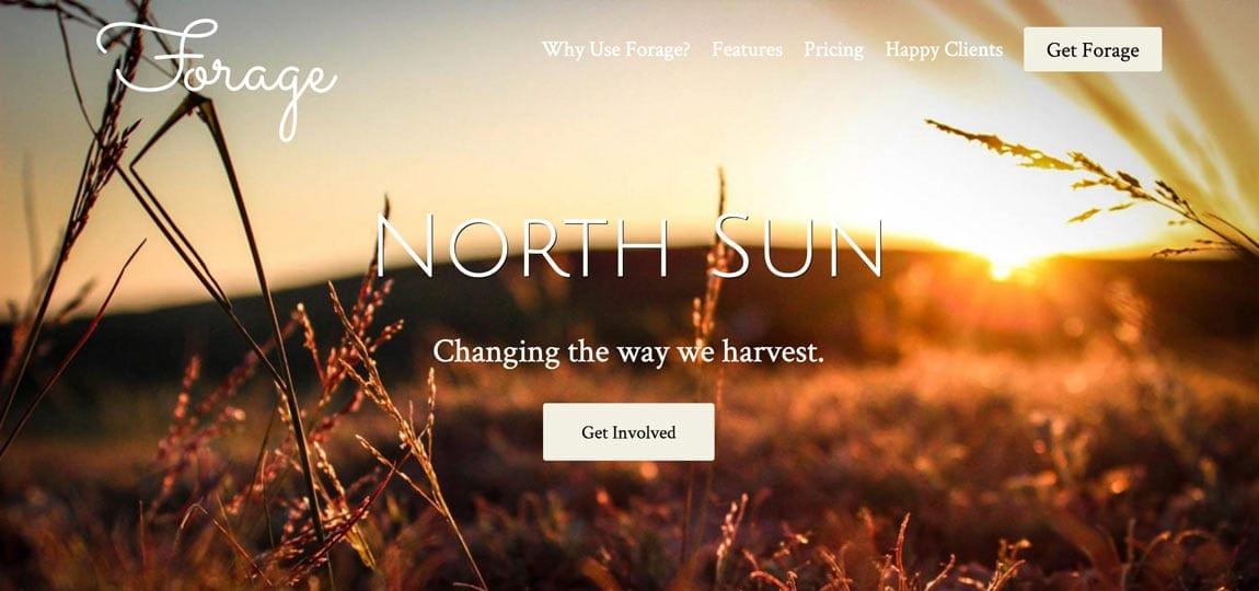 a field, a slogan, some buttons, a website
